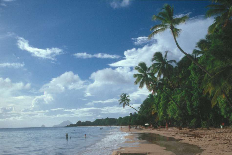 Martinique | Grande Anse des Salines an der Südspitze der Insel | © Karibik Inside